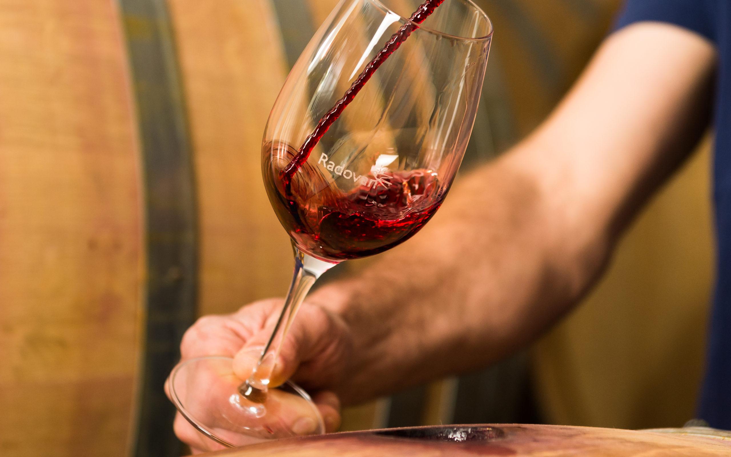 hren | plethora of creativity // Radovan winery photography